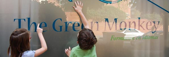 Cursos de Idiomas en Madrid The Green Monkey